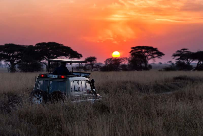Parque Masai Mara