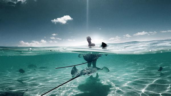 Buceando con peces